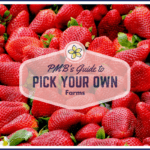 Where to Pick-Your-Own Strawberries in Rhode Island