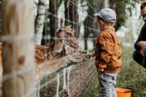 toddler infant zoo 30 million easy steps banana peel Providence Moms Blog