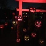 The Magic Behind Roger Williams Park Zoo's Jack-O-Lantern Spectacular