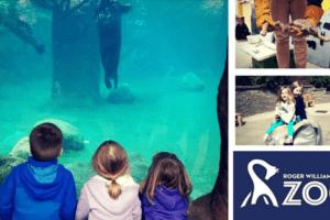 Roger Williams Park Zoo Black Friday Providence Moms Blog