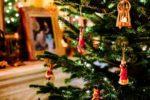 Christmas Tree Early Providence Moms Blog