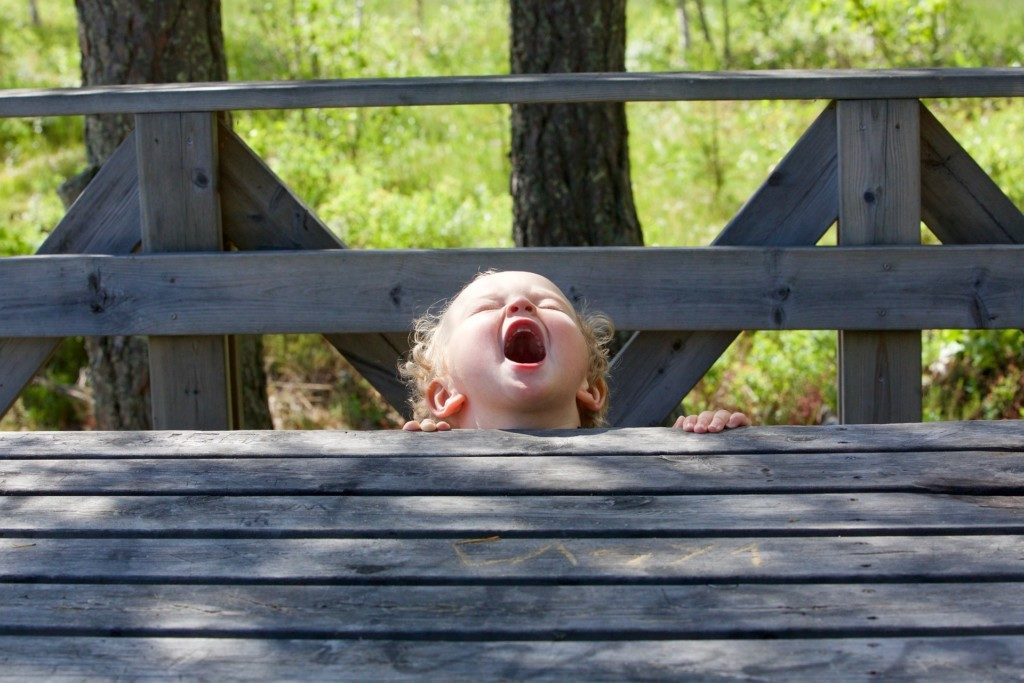 picture of toddler screaming near a bridge Providence Moms Blog