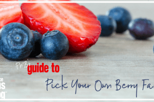 Strawberries and Blueberries on woodgrain background with the words PMB's (Providence Moms Blog) Guide to Pick your own berry farms. Farms located in Rhode Island and Massachusetts