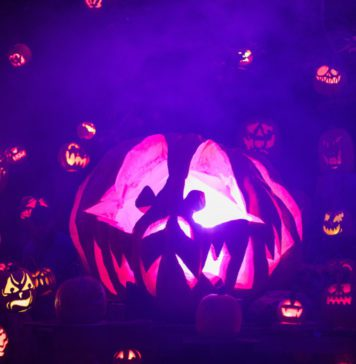 Jack O Lantern Spectacular Fall Kids Activities Providence Moms Blog