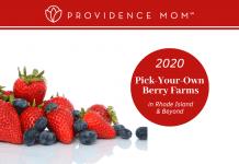 berry picking RI