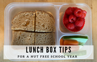 nut free lunches