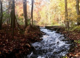river winding through the woods   adventure base camp   providence mom
