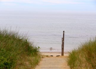 cape cod beach path
