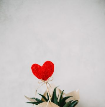 plant with heart celebrating Valentine's Day
